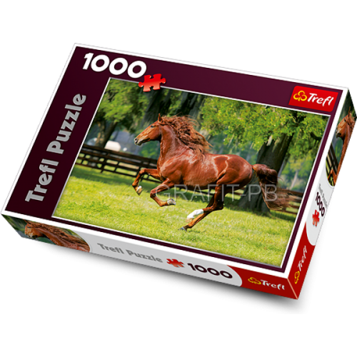 PUZZLE 1000 GALOP TREFL PT-10201